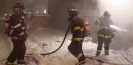 Pożar w sklepie zoologicznym. Ogień zabił około 100 zwierząt