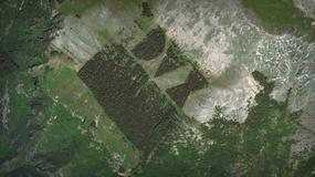 Koło Rzymu spłonął las - hołd dla Benito Mussoliniego