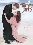 Ptaki ciernistych krzewów (serial)