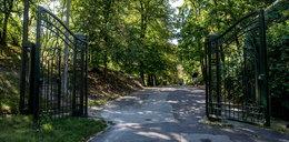 Park Bednarskiego odzyska dawny blask. Rewitalizacja coraz bliżej
