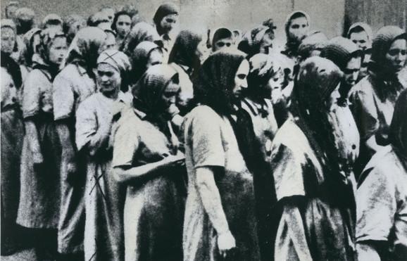 Auschwitz profimedia-0495096598