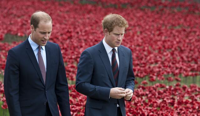 Prinčevi Hari i Vilijam