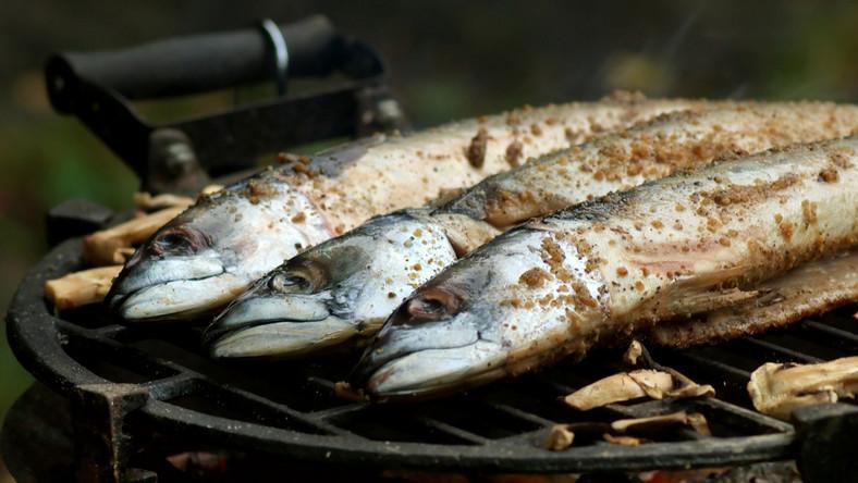 Ryba wpływa na majówkę