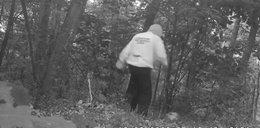 Groza w lubelskich lasach. Mężczyzna chciał doprowadzić do nieszczęścia!
