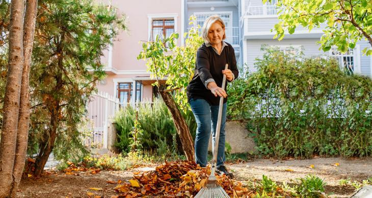 Diese Gartenarbeiten stehen im Herbst an