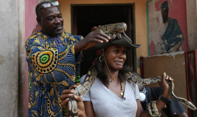 A tourist carrying a snake at Temple des pythons [Black feelings]