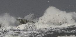 Sześć osób zginęło po przejściu sztormu Fabien