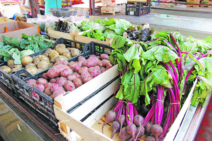 organska hrana02 foto petar markovic