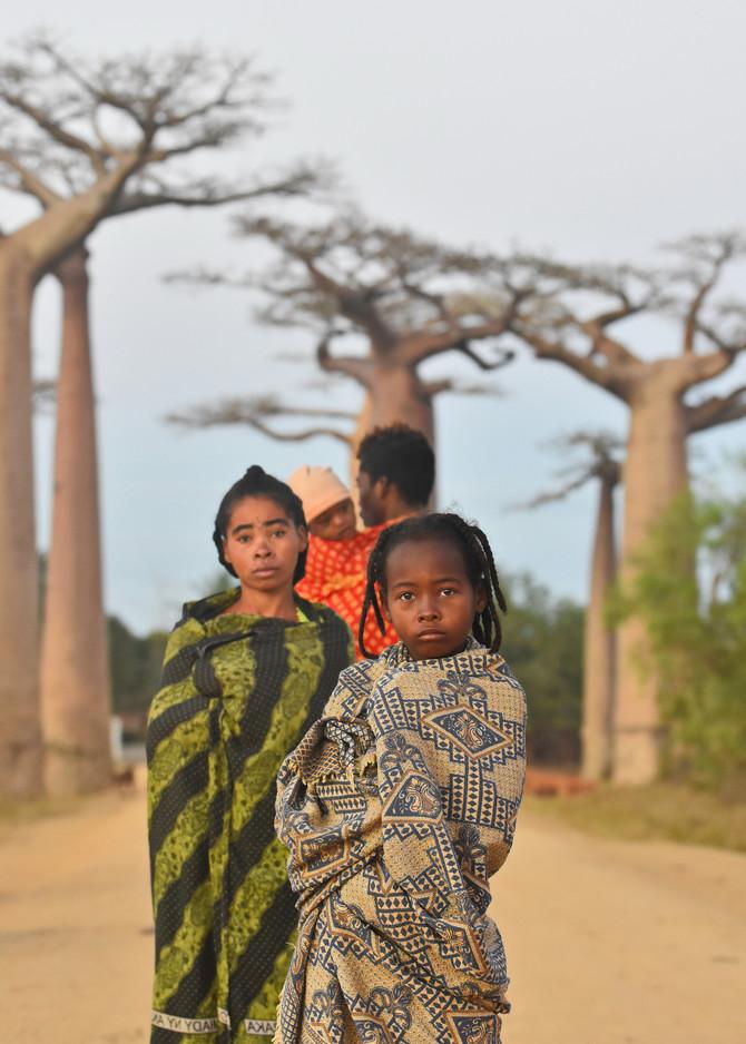 Ljudi za vreme izlaska sunca na Baobab aveniji, Madagaskar