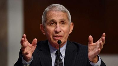 Fauci reportedly has no plans to leave his post in the Trump administration despite the White House's efforts to undermine him