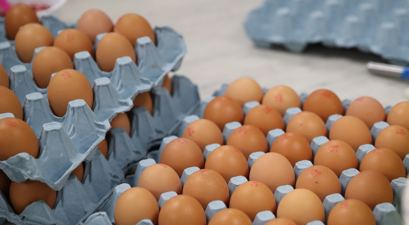 Telltale signs that your eggs have gone bad and you shouldn't eat them
