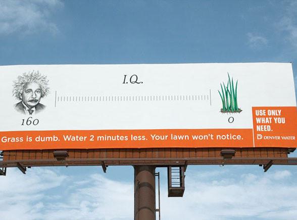 Oszczędzaj wodę bo trawa jest głupia