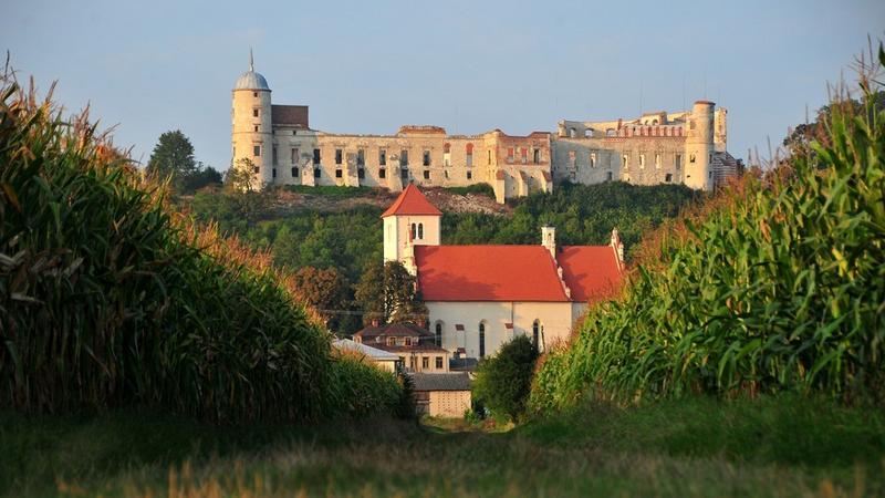 Ruiny zamku w Janowcu nad Wisłą