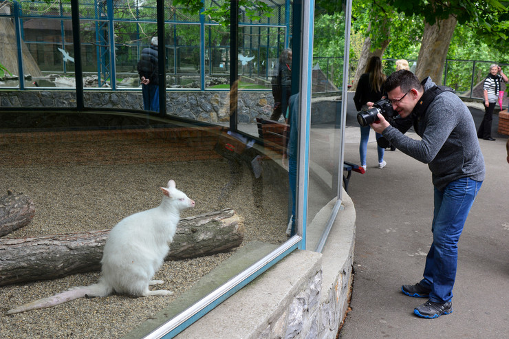 zoo vrt foto M Ilic
