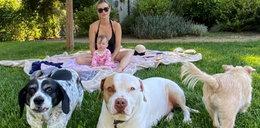 Wzruszona Joanna Krupa o swojej córeczce: Asha już kocha zwierzątka tak mocno, jak ja