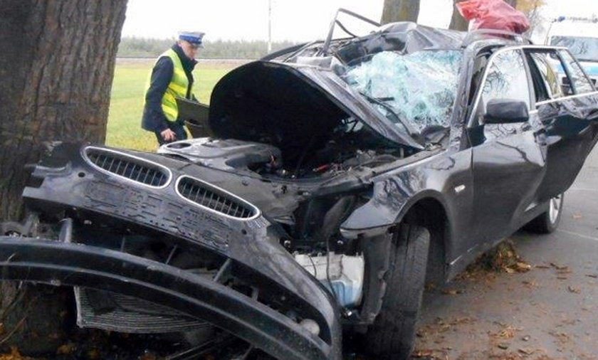 Policjant ze Świebodzina uderzył w drzewo