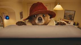 """Paddington 2"" ma datę premiery"
