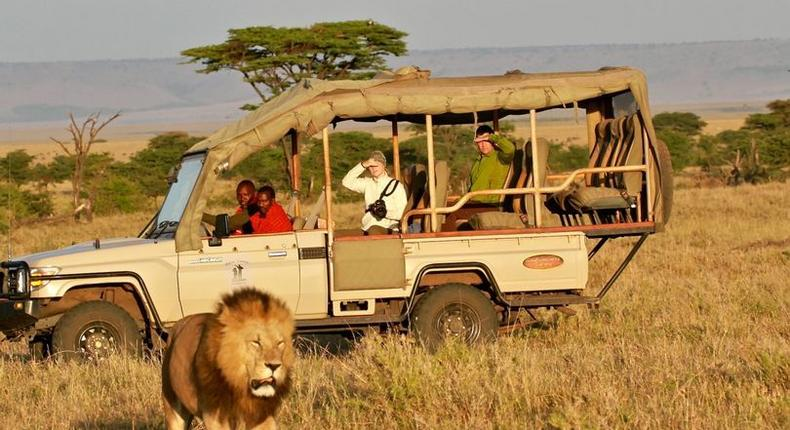 Kenya's game parks, reserves and other wildlife protection areas host some of the wildest and unique game.