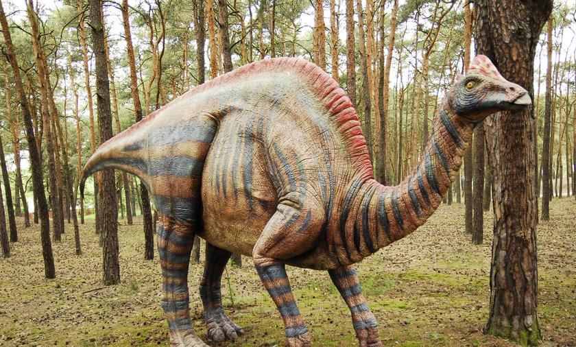 Dinozaury w Poznaniu