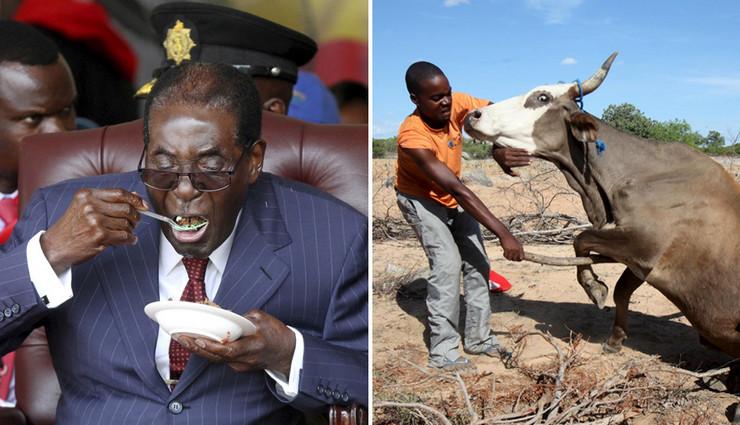 zimbabve mugabe rodjendan siromastvo pokrivalica foto reuters