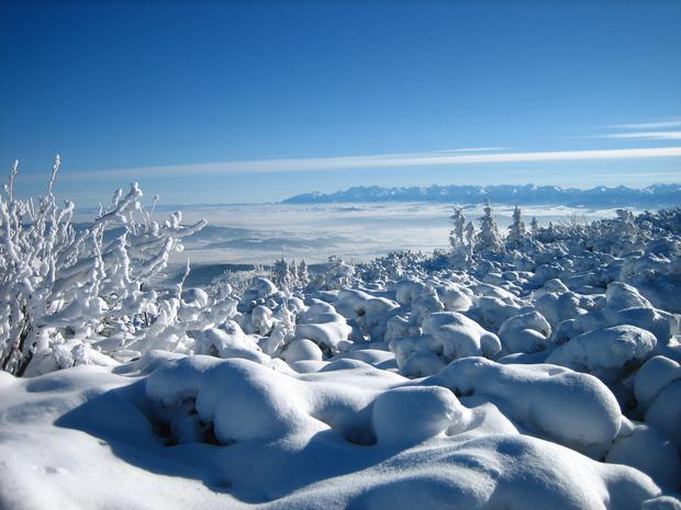 Tatry widziane z masywu Babiej Góry