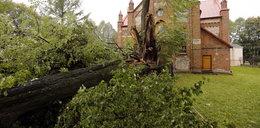Orkan powalił naszą świętą lipkę