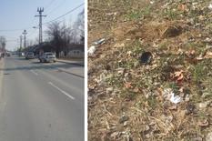 Užasna nesreća u Novom Sadu: Sin pregazio ženu i pobegao