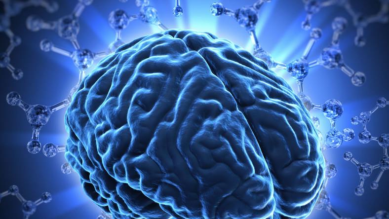 Masz problemy z pamięcią? Pomoże ci dieta bogata w kwasy omega-3
