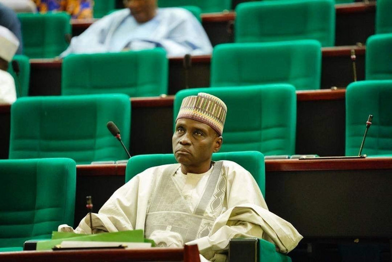 Chief Whip of the House of Representatives, Mohammed Tahir Monguno, believes Nigerians should have access to sophisticated arms to protect themselves against criminal attacks [House of Reps]