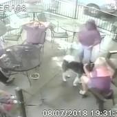 Bivša manekenka mazila psa u restoranu, a onda ju je UJEO ZA LICE da je završila na operaciji (VIDEO)