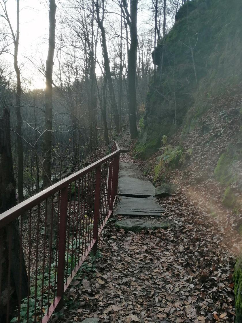 Ścieżka Hochbergów