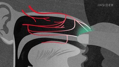 ENT doctors debunk 11 ear and nose myths