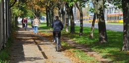 Rowerzyści chcą więcej ścieżek