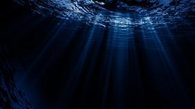 Potwór z głębin wyłowiony w Tajlandii