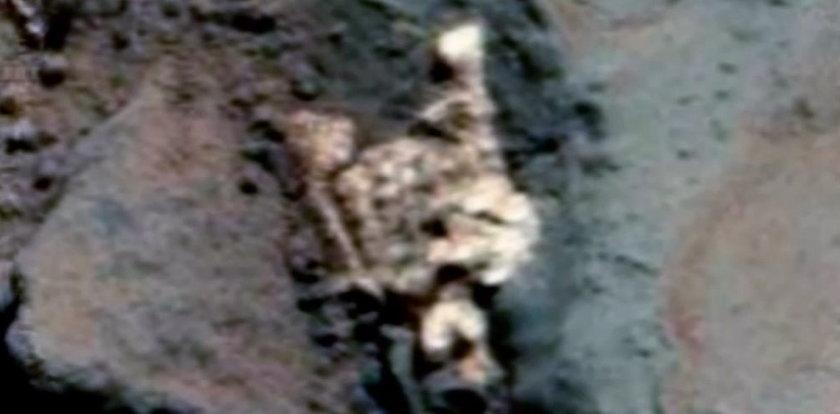 Na Marsie odnaleziono tajemniczy szkielet?