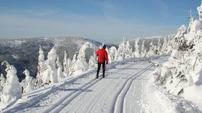 Najlepsze miejsca na biegówki w czeskich górach