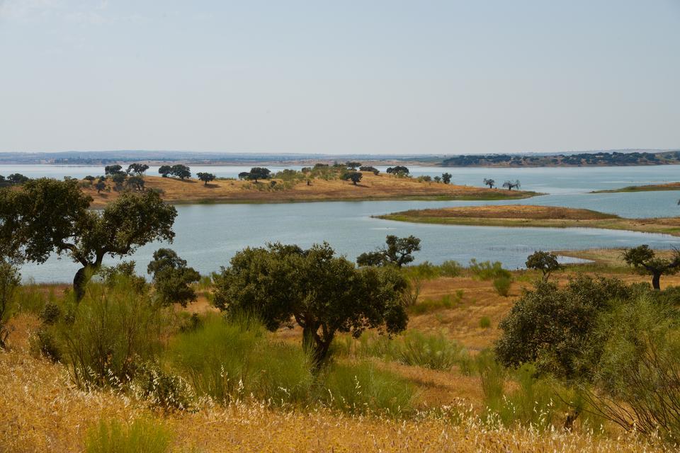 Barragem de Alqueva - sztuczne jezioro w środku wypalonego słońcem Alentejo blisko granicy z Hiszpanią