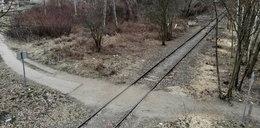 Marszałek daje miliony na pociąg do Świdnicy, a stacji na Ołtaszynie nie ma!