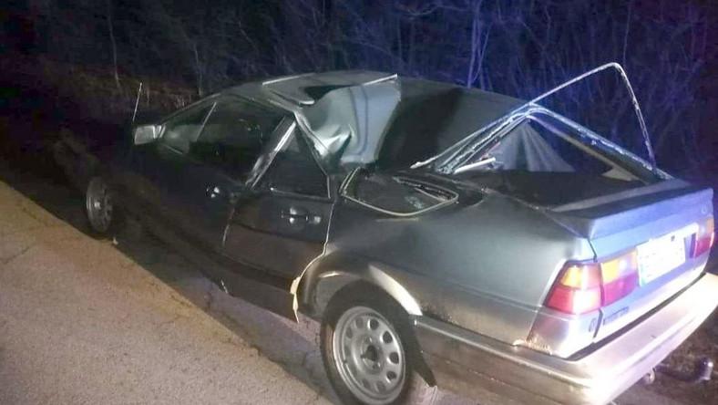 VW Passat złamany przez drzewo