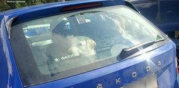 Nieodpowiedzialna turystka zamknęła psa w aucie na słońcu i poszła na Morskie Oko