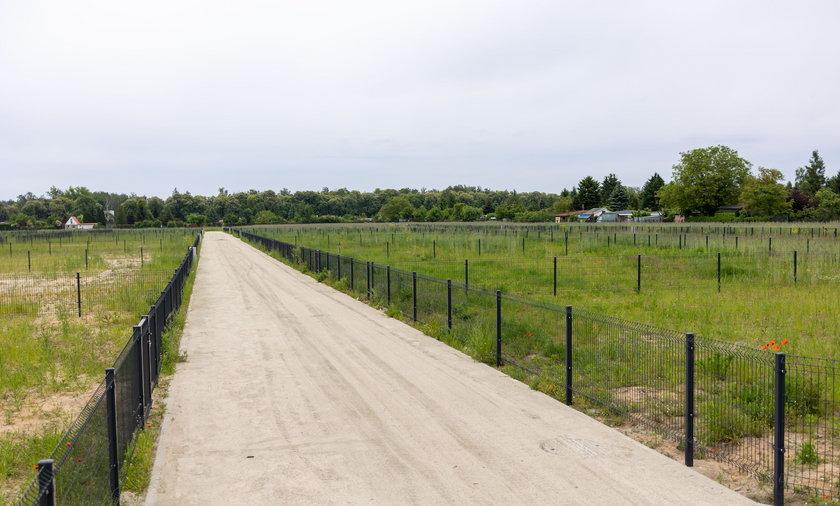 Teren na Głuszynie został zagospodarowany pod ogródki działkowe.