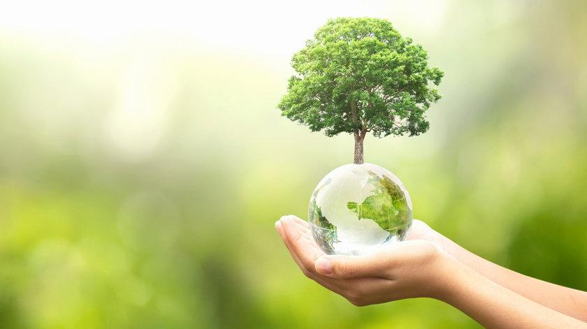 Światowy Dzień Ziemi 2021. Już 22 kwietnia