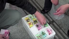Okrutna moda w Chinach: sprzedają breloczki z żywymi zwierzętami