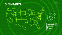 Where the 11 deadliest animals in the US live