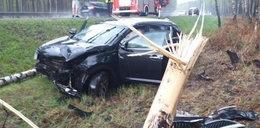 Okorował autem drzewa. Jak on to przeżył?