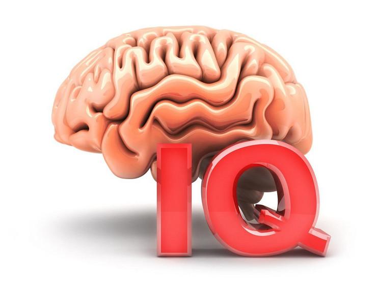 IQ mozak profimedia-0327964582