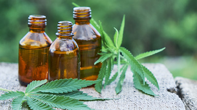 5 surprising health benefits of Cannabis oil