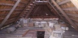 Makabryczne odkrycie na Podhalu. Znaleziono 30 pudeł z ludzkimi szczątkami