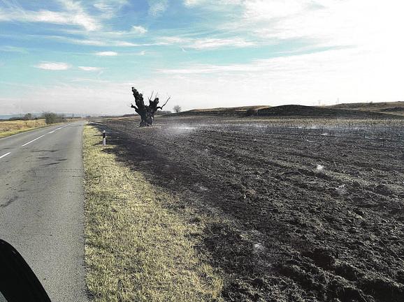 OKOLINA VRŠCA: Vlasnici njiva izazvali požar na više hektara