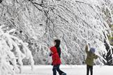 Novi Sad48 Sneg u gradu foto Nenad Mihajlovic